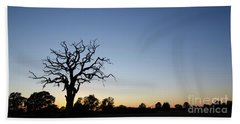 Old Tree Silhouette Beach Towel