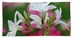 Beach Towel featuring the photograph Oleander Casablanca 1 by Wilhelm Hufnagl