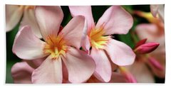 Beach Towel featuring the photograph Oleander Dr. Ragioneri 2 by Wilhelm Hufnagl