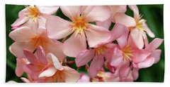 Beach Towel featuring the photograph Oleander Dr. Ragioneri 3 by Wilhelm Hufnagl