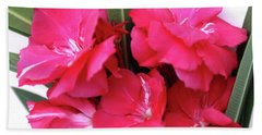 Beach Towel featuring the photograph Oleander Geant Des Batailles 1 by Wilhelm Hufnagl