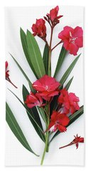 Beach Towel featuring the photograph Oleander Geant Des Batailles 2 by Wilhelm Hufnagl