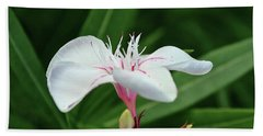 Oleander Harriet Newding  1 Beach Sheet