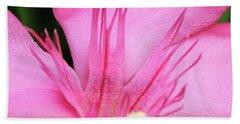 Oleander Professor Parlatore 3 Beach Towel