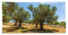 Olive Grove Beach Towel