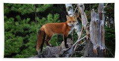 On The Lookout Beach Towel by Gary Hall
