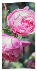Beach Towel featuring the photograph One Bold, One Bashful by Linda Lees
