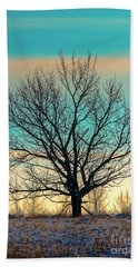 Beach Towel featuring the photograph One by Nina Stavlund