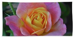 One Of Several Roses Beach Sheet by Debby Pueschel