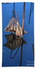Beach Towel featuring the photograph Only In Still Water by Linda Lees