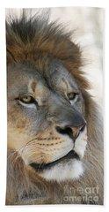 Onyo #10 Beach Towel