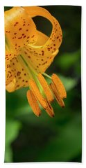 Beach Towel featuring the photograph Open Tiger Lily by Jean Noren