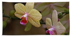 Opulent Orchids Beach Towel