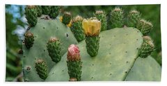 Opuntia Cactus Beach Sheet by Patrick Boening