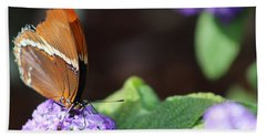 Orange And Brown Butterfly On Purple Beach Towel