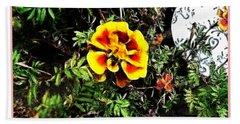 Beach Sheet featuring the photograph Orange And Yellow Flower by Joan  Minchak