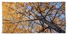 Orange Autumn Tree. Beach Towel by Teemu Tretjakov
