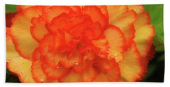 Orange Begonia Beach Towel by Haleh Mahbod