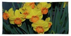 Orange-centered Daffodils Beach Sheet