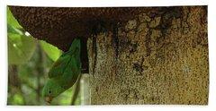 Orange -chinned Parakeet  On A Termite Mound Beach Towel