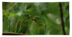 Orange-chinned Parakeets-  Beach Towel