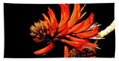 Beach Towel featuring the photograph Orange Clover II by Stephen Mitchell