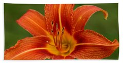 Orange Day Lily No.2 Beach Towel