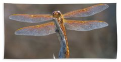 Dragonfly 3 Beach Towel