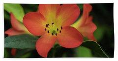 Orange Flower Beach Sheet