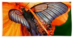 Orange Hibiscus Butterfly Beach Sheet by ABeautifulSky Photography
