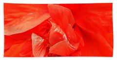 Beach Sheet featuring the photograph Orange Hibiscus by Cathy Donohoue