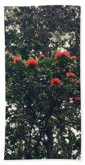 Orange Ohia Lehua On My Morning Walk Beach Sheet