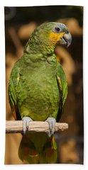 Orange-winged Amazon Parrot Beach Towel