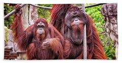 Orangutan Couple Beach Towel by Stephanie Hayes