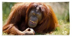 Orangutan In The Grass Beach Towel