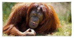 Orangutan In The Grass Beach Sheet by Garry Gay