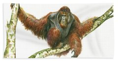 Orangutang Beach Towel