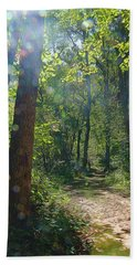 Beach Towel featuring the photograph Orbs In The Woods by Beth Sawickie