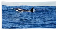 Orca Beach Towel by Marilyn Wilson