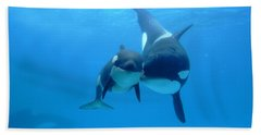 Orca Orcinus Orca Mother And Newborn Beach Towel by Hiroya Minakuchi