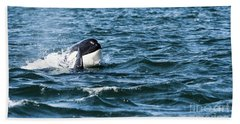 Orca Whale Beach Towel