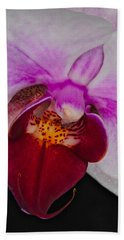 Orchid 376 Beach Sheet