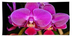 Orchid 422 Beach Towel
