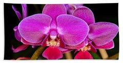 Orchid 422 Beach Sheet