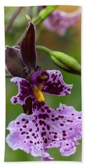 Beach Towel featuring the photograph Orchid - Caucaea Rhodosticta by Heiko Koehrer-Wagner