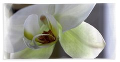 Orchid For Valentines Day Beach Towel