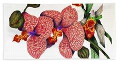Orchid Beach Sheet