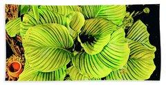 Orchid Green Fade Aloha  Beach Towel
