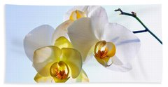 Orchid With Sky Background Beach Sheet