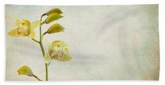Orchids Beach Sheet